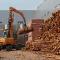 В Петрозаводске открылся деревообрабатывающий комбинат «Калевала»