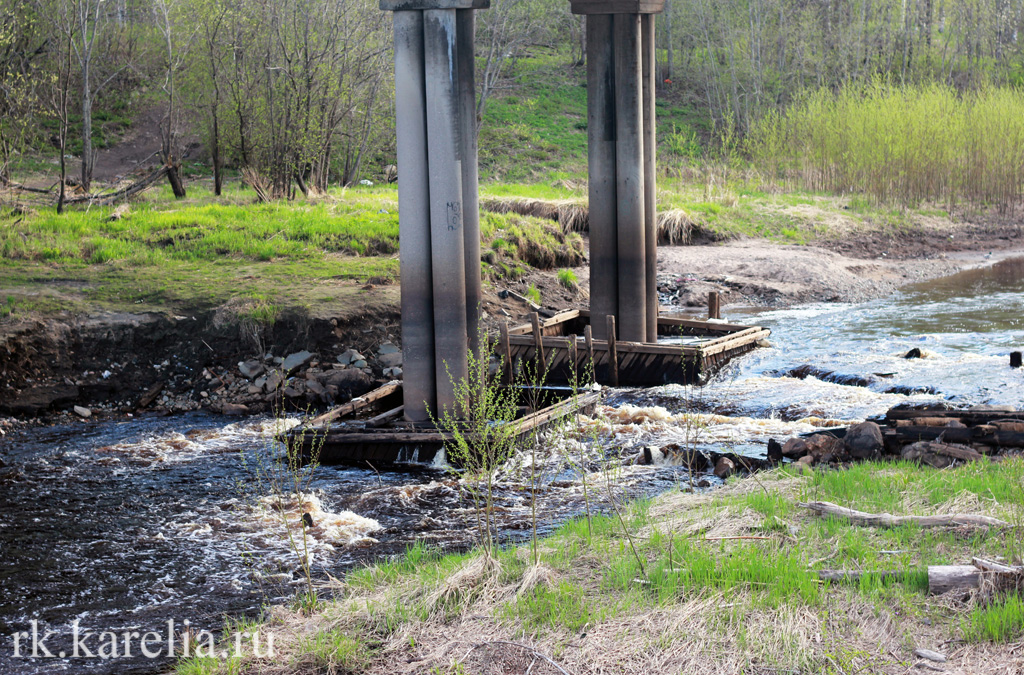 Берег реки Лососинки у моста на улице Мерецкова