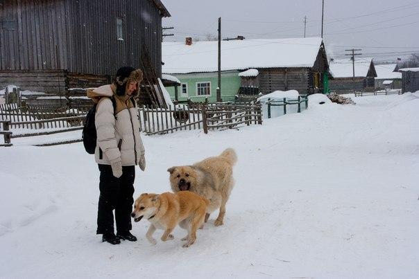 Село Нюхча