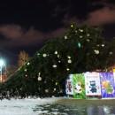 В Петрозаводске сдуло главную городскую ель