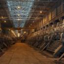 В Надвоицах создадут новое алюминиевое производство
