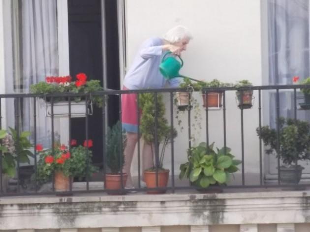 Коренные жители, они еще остались на мансардах и балконах