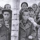 Советские дети-узники 6-го лагеря в Петрозаводске, 1944г. http://pobeda.gov.karelia.ru/Photos/photo.html?id=5565