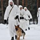 Фото: http://www.ampravda.ru/